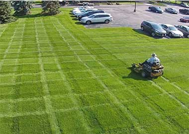 CommercialMowing